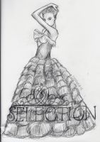 The Selection bookart by feelslikesinging