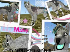 Mahy Preset! :D by WolfSoulKeeper