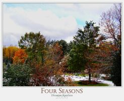 Four Seasons by Dhuaine
