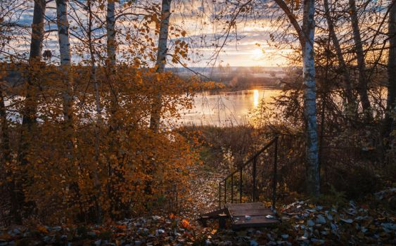 October landscape with birches by hitforsa