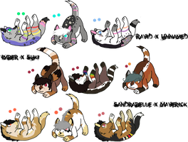 kaes-loveable-adopts Multiple Litters by KittehzAdopts