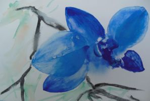 Blue Orchid 2 by DebIPass