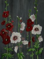 hollyhocks by simplelines