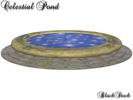 Celestial Pond by BlackStock