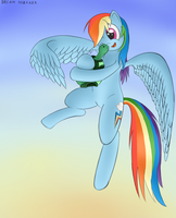Flying with my pet! by balazsbali