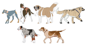 Breed Practice by Whitelupine