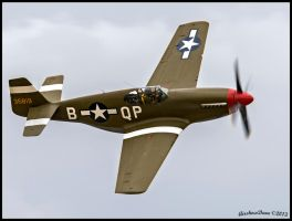 P-51C Boise Bee 36819 NX4651C by AirshowDave