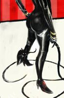 Catwoman by TylerChampion