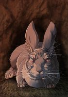 Watership Down - The Chief Rabbit by fiszike