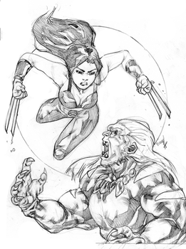 x-23 vs. sabertooth by gunzaku56