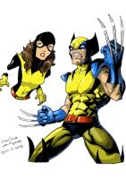 Wolverine and Kitty by marinuk-pencilpower