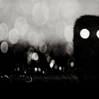THE BAD BOKEH by mheuf