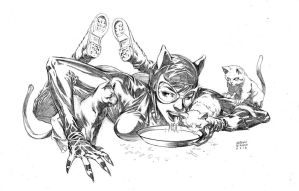 Catwoman commission 02 by fragcomics