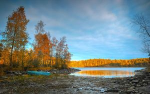 Autumn and Sigma Dp0 Quattro..Valaam Islands  _58_ by my-shots
