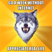 Go a week without internet by Zodiax3