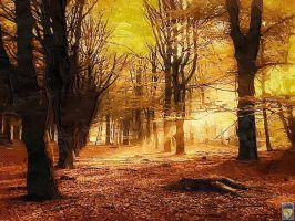 remnants of autumn by imageking10