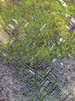 Mossy Chinese checkered floor tile 4 by Greyfaerie4