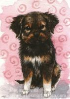 Scruffy Pup 2 ACEO by Pannya