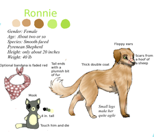 Ronnie by Kittysaysmeow-WQ