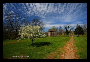 Berry House by TRBPhotographyLLC