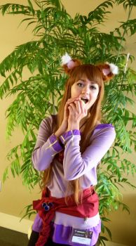 She is Holo, the Wise Wolf! by pepperpizzapal