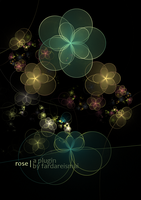 Apophysis Plugin: Rose by FarDareisMai