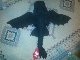 Toothless Plush Top View by Horsegirl71496