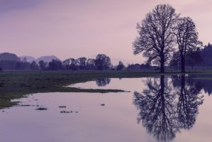 reflection by Mark-Heather