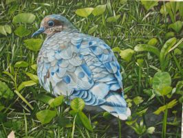 morning dove painting by relytscire