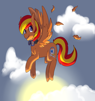 Let's Fly In The Sun Set by chris9801