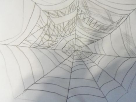 spiderweb by gangstagirl19
