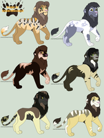 Male Lion Design Auction: Batch 1 ..::OPEN::.. by XxGoldenBlossomxX