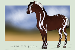 2138 ES Kulo by Anhurs