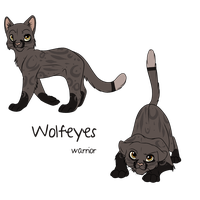 WolfEyes Ref sheet by Searii