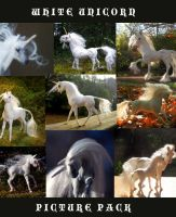 White Unicorn Picture Pack by SovaeArt