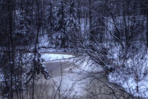 Winter Creek by schon