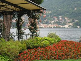 VASE / YAM 2010-2011 ' Terrence in Lake Como ' by havocPigeons