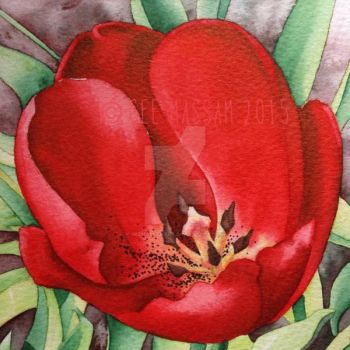 Red Tulip - Aquamarker watercolour marker tutorial by GeeMassamArt