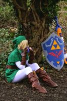 Legend of Zelda - Preview by TheEmpiresGuild