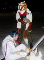 Fox McCloud and Marth's Break by ProtoCall13o2
