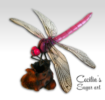 Dragonfly - Made of Sugar by Kabanero