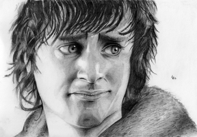 Frodo by manorak