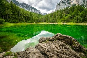 Shaded Green by hannes-flo