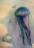Jellyfish by nachansada