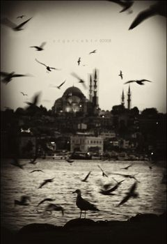 shutter speed in Istanbul by oscarsnapshotter