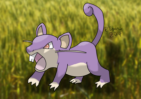 Rattata by Cathartis