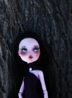 Velvet (Custom Draculaura doll) by AliceWHatter