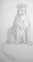 Lion Sketch #1 by ashleigheperry