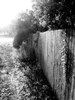 old fence by thegreatwolfsage