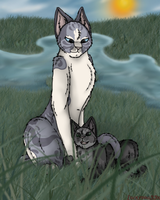 Raindrop and Graypaw by Luckydog33k
